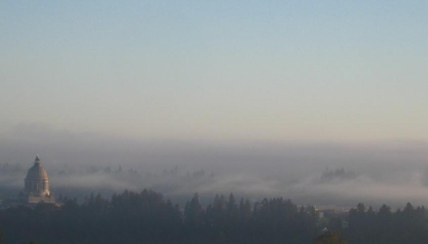 Stratus (fog)