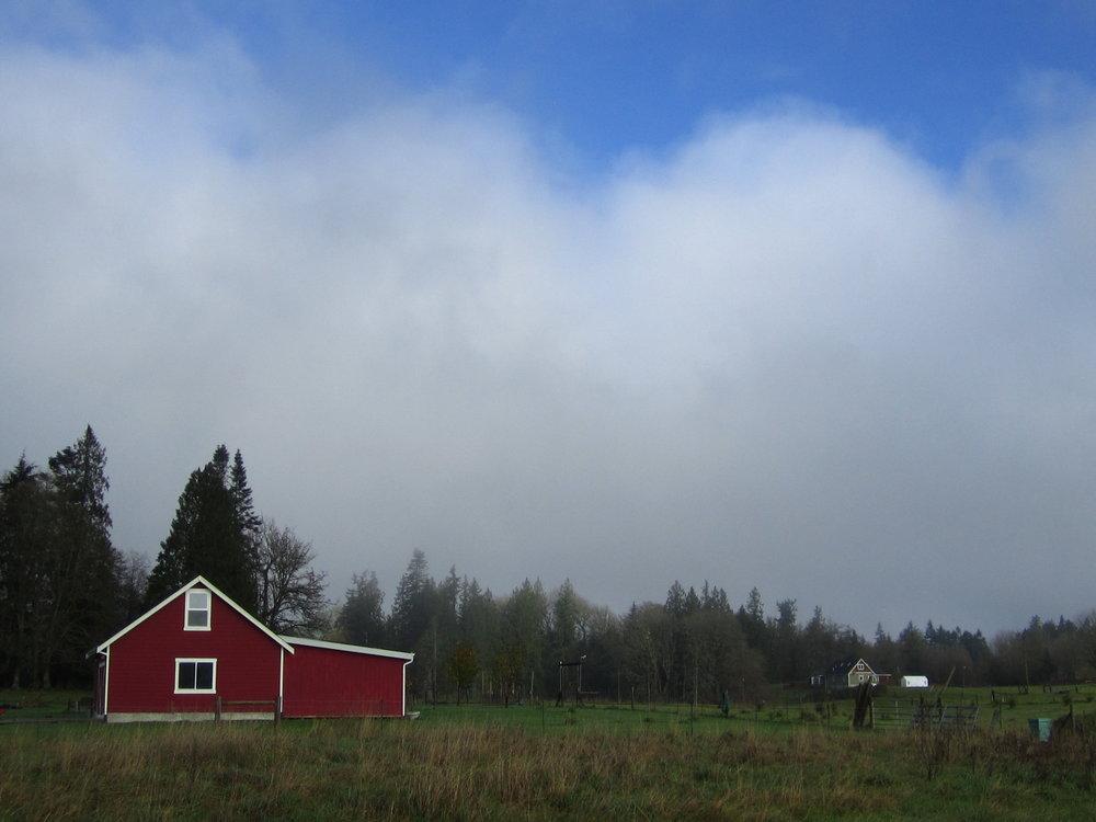 Stratus (formerly fog)