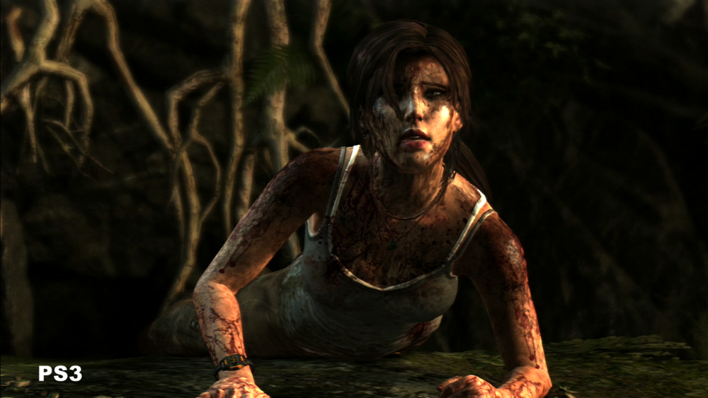 Tomb Raider (PS3) Screen Shot 1_26_14, 12.32 PM 8.png