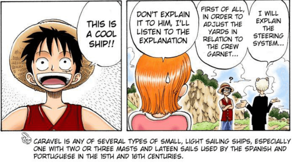 """Don't explain it to him (Luffy). I'll listen to the explanation."" - Nami ( One Piece  chapter 41)"