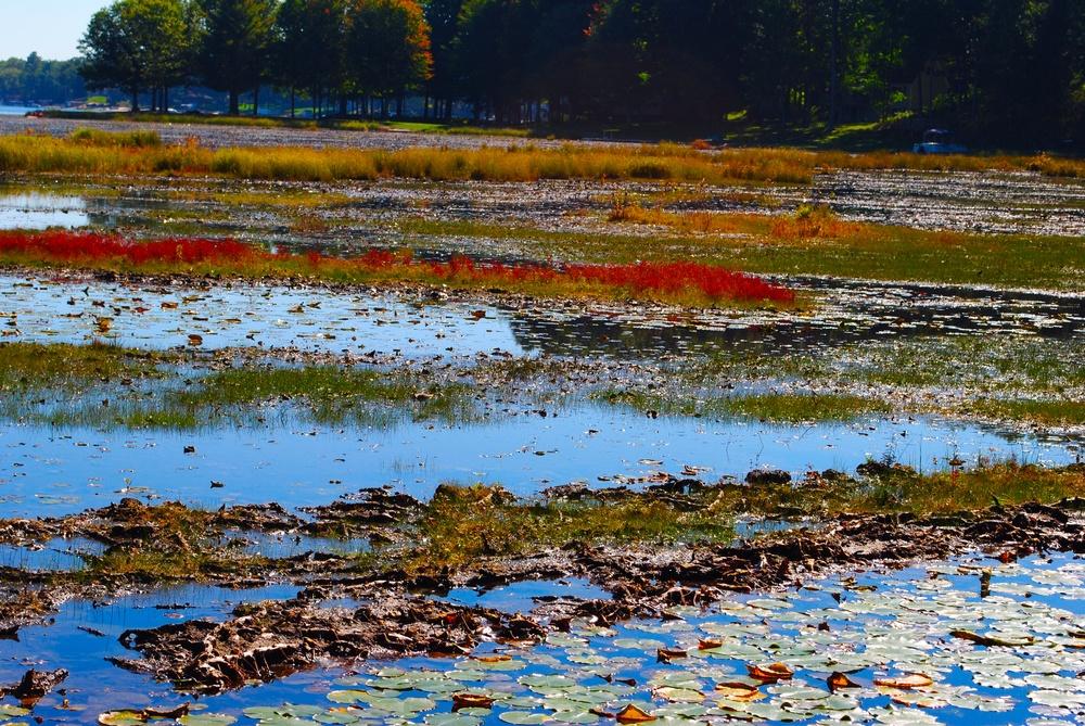 Big Star Lake | Baldwin, Michigan | Photo Credit: Terri Spaulding