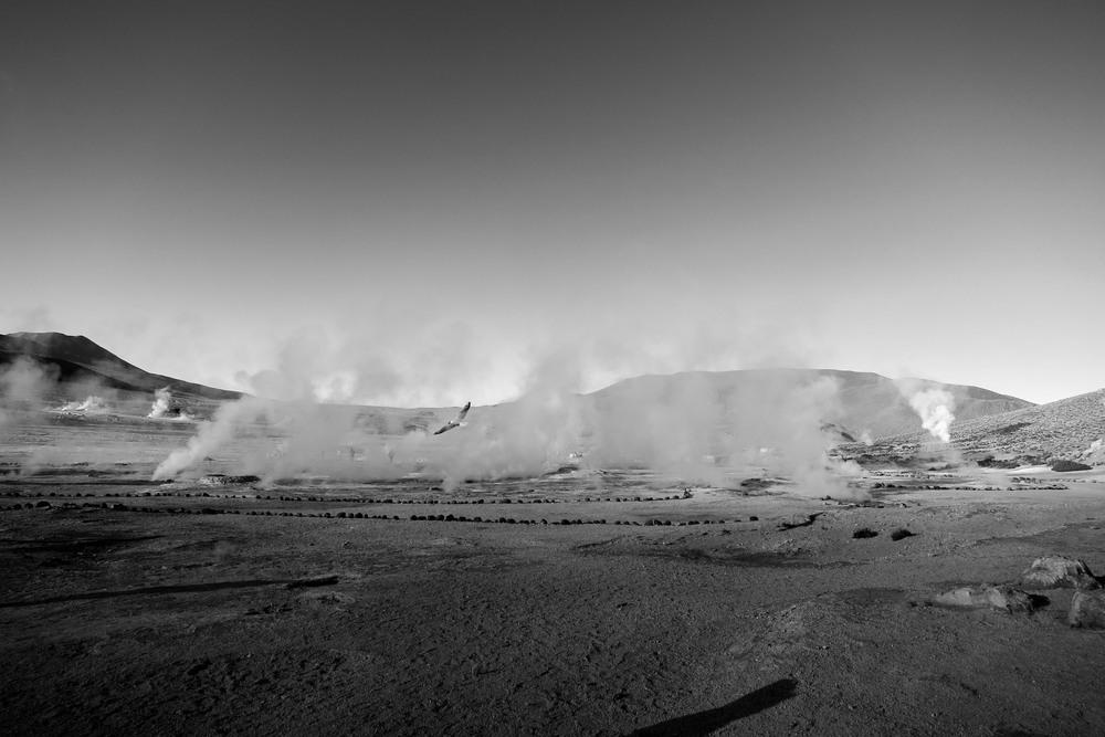 Desert_Essay_2b-4562.jpg