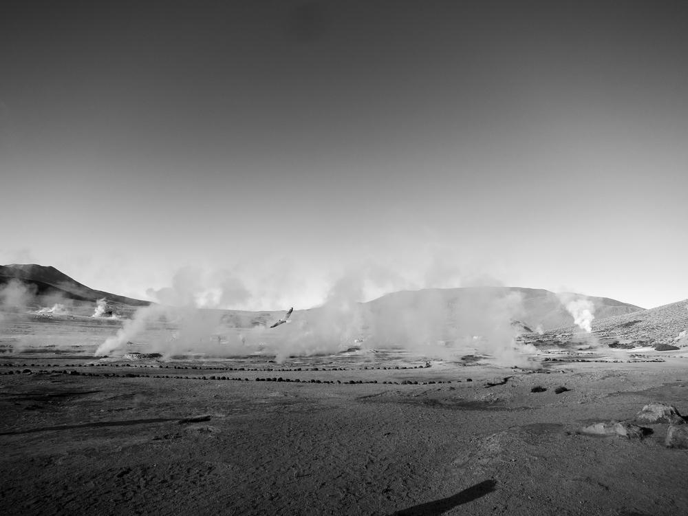 Desert_Essay_2-4562.jpg