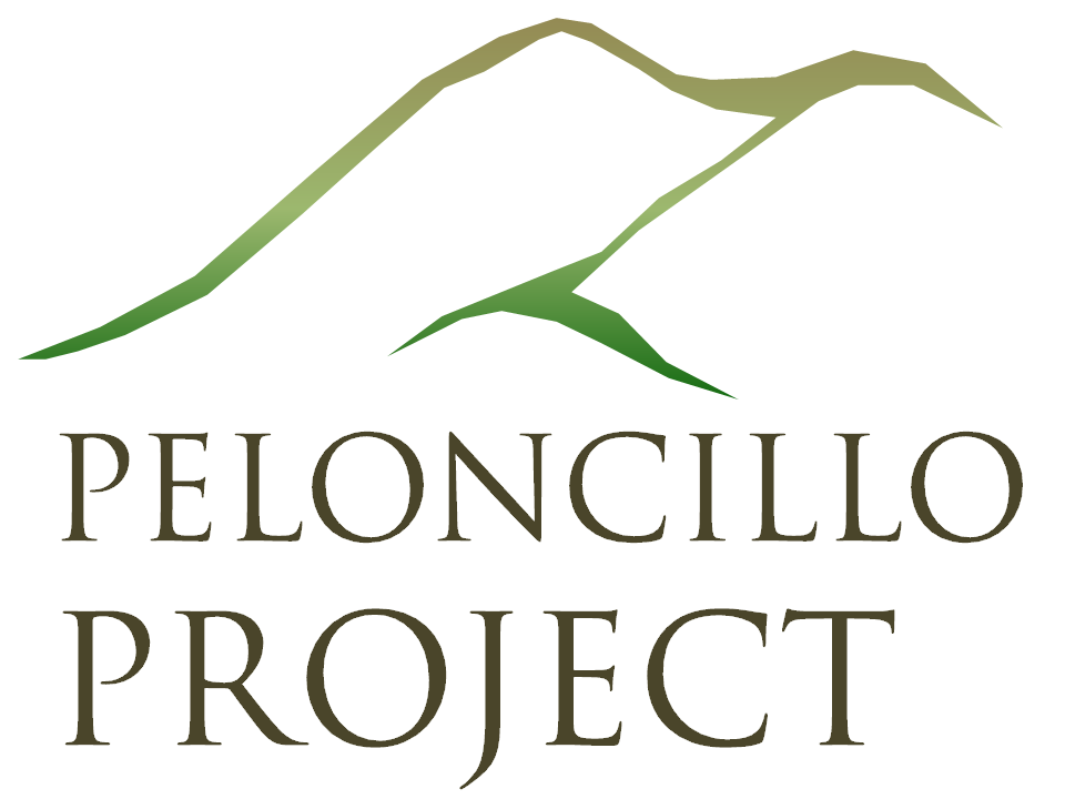 The Peloncillo Project