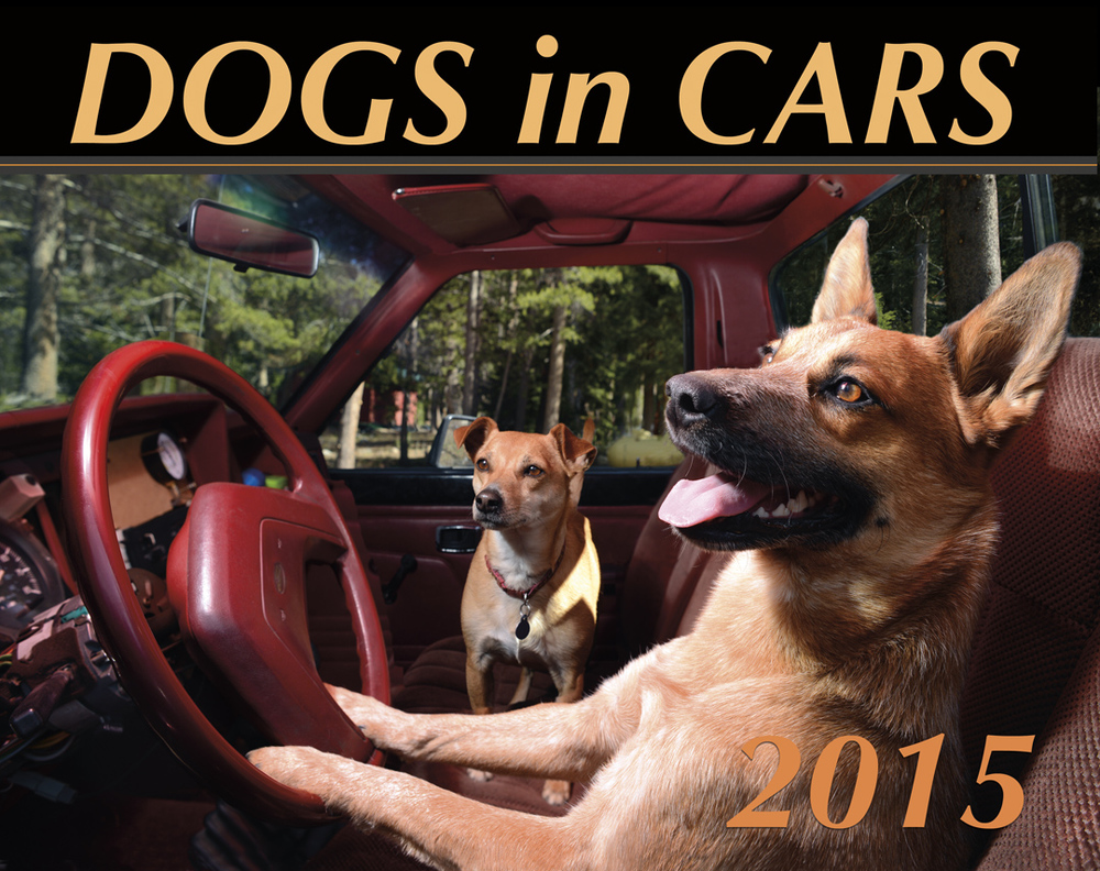 The Official Dogs in Cars 2015 Wall Calendar by Lara Jo Regan