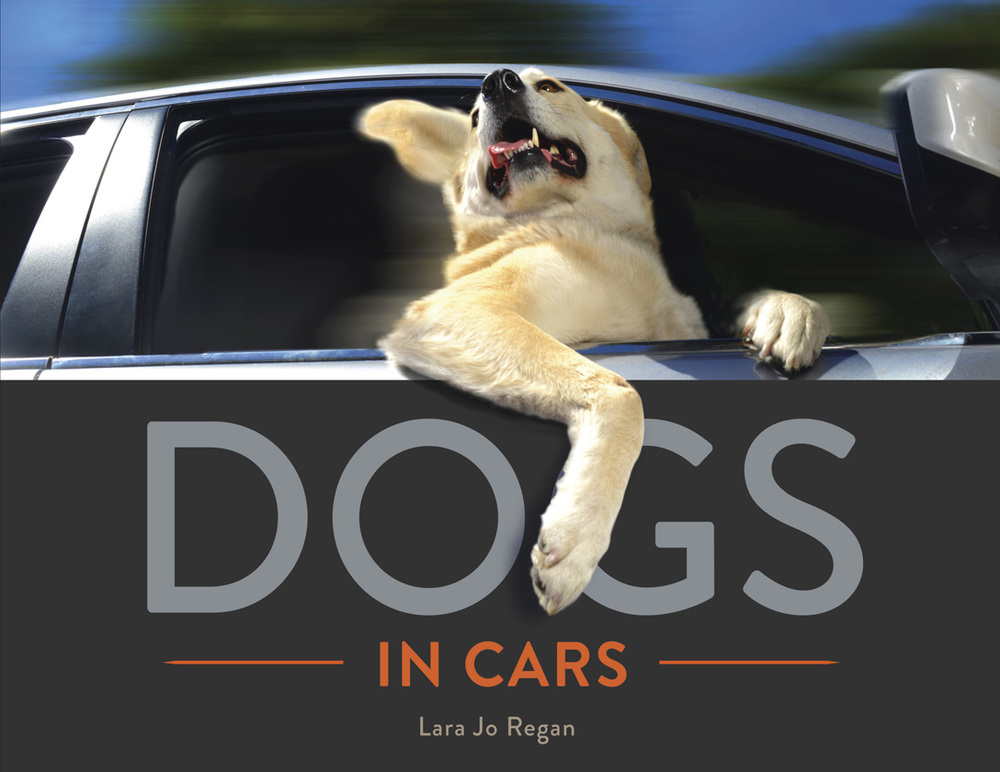 Dogs in Cars (the book) by Lara Jo Regan          144 pages,  8x10 inches