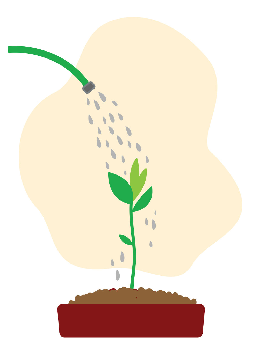 Plant-with-Water.jpg