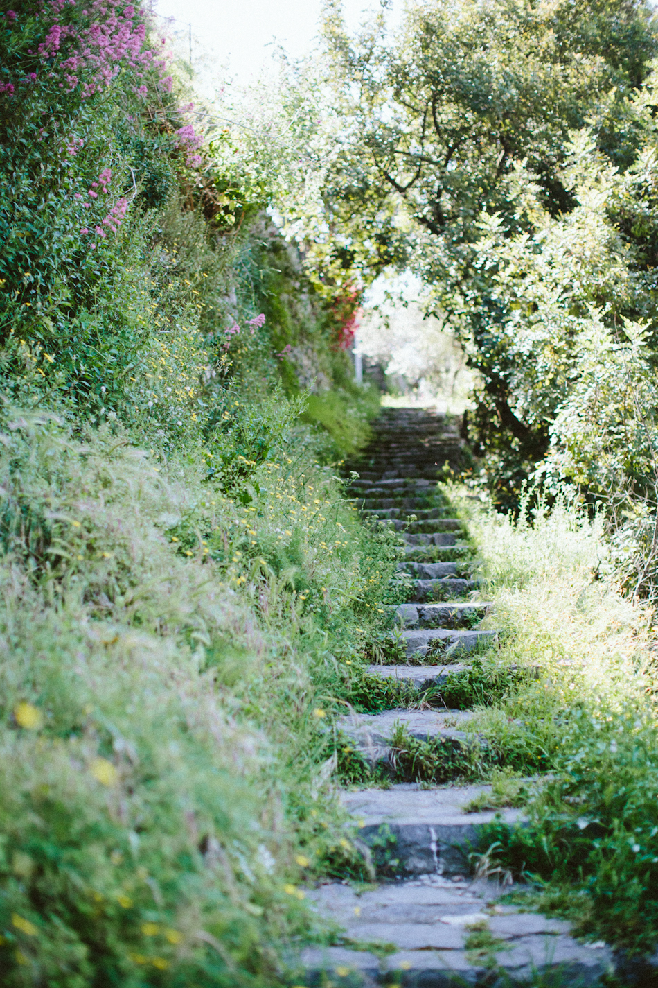 Steps to Positano by Paige Jones