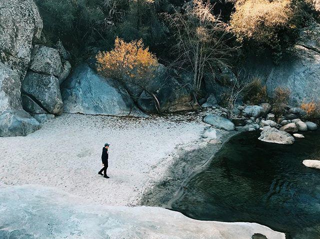 Silence + Solitude