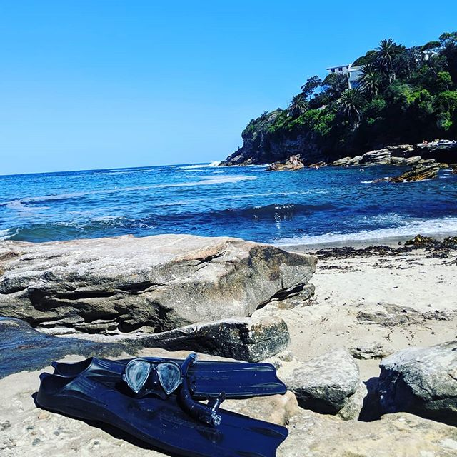 Gordons bay is amazing for a snorkel! - - - - - #snorkeling #bondi #sydney #australia #hostellife #livingthedream