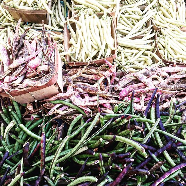 farmers market treasures