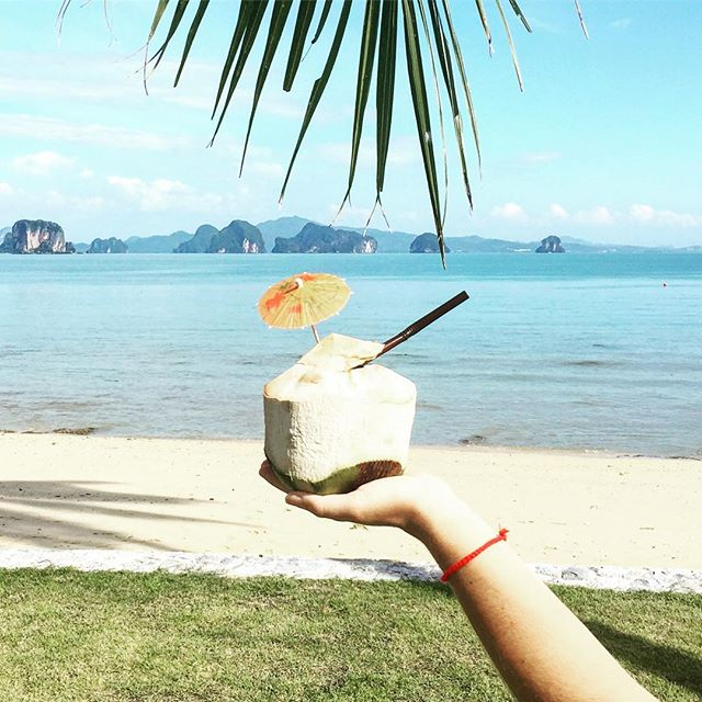 a coconut a day