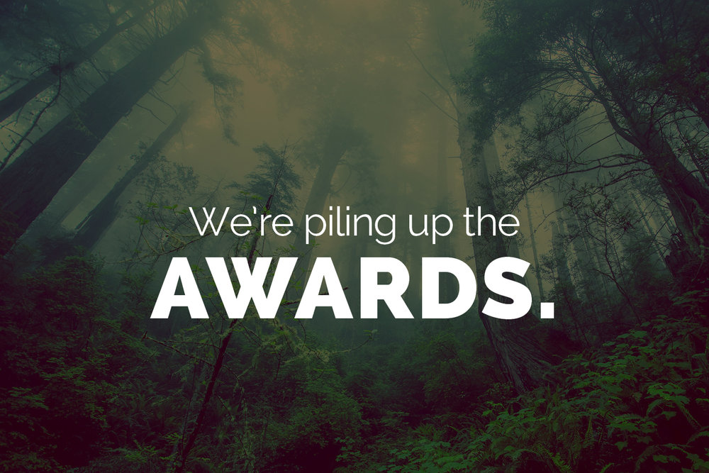 We're piling up the awards.