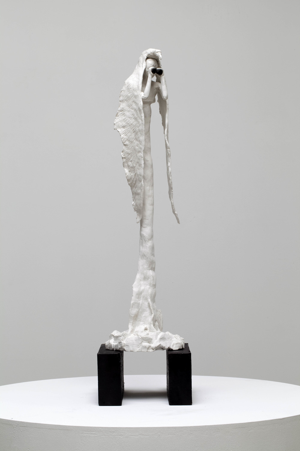 Albatross, bronze, polymer modelling clay  78 x 17 x 22cm, 2011. Photography by Ashley Barber, Sarah Cottier Gallery. Private collection.
