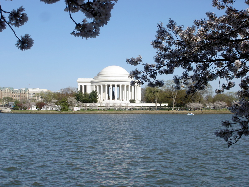 Jefferson Memorial Framed w Blossoms.jpg