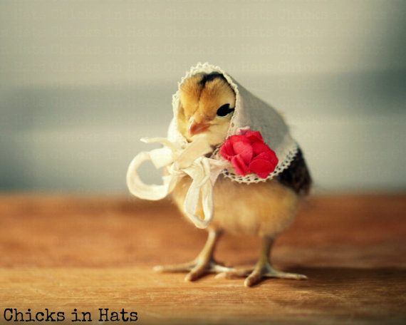 Greeting Card Chick in Vintage White Kerchief With A Red Rose by chicksinhats