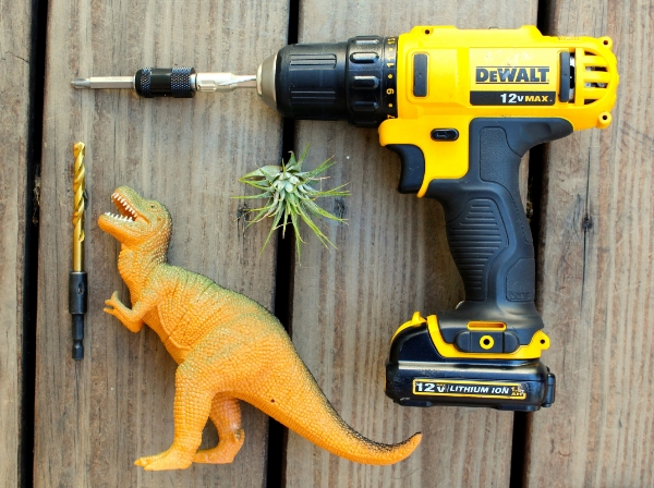 DIY T Rex Dinosaur Planter Supplies