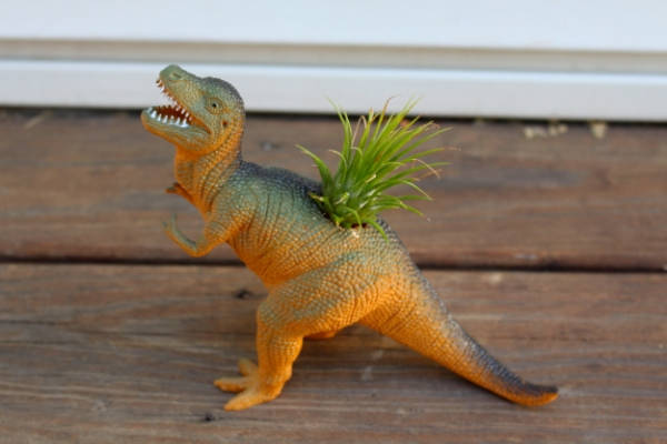 T Rex Dinosaur air plant holder planter