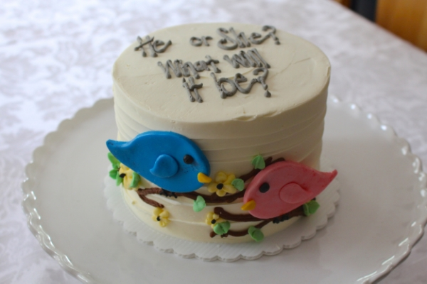 Bird gender reveal cake- he or she what will it be