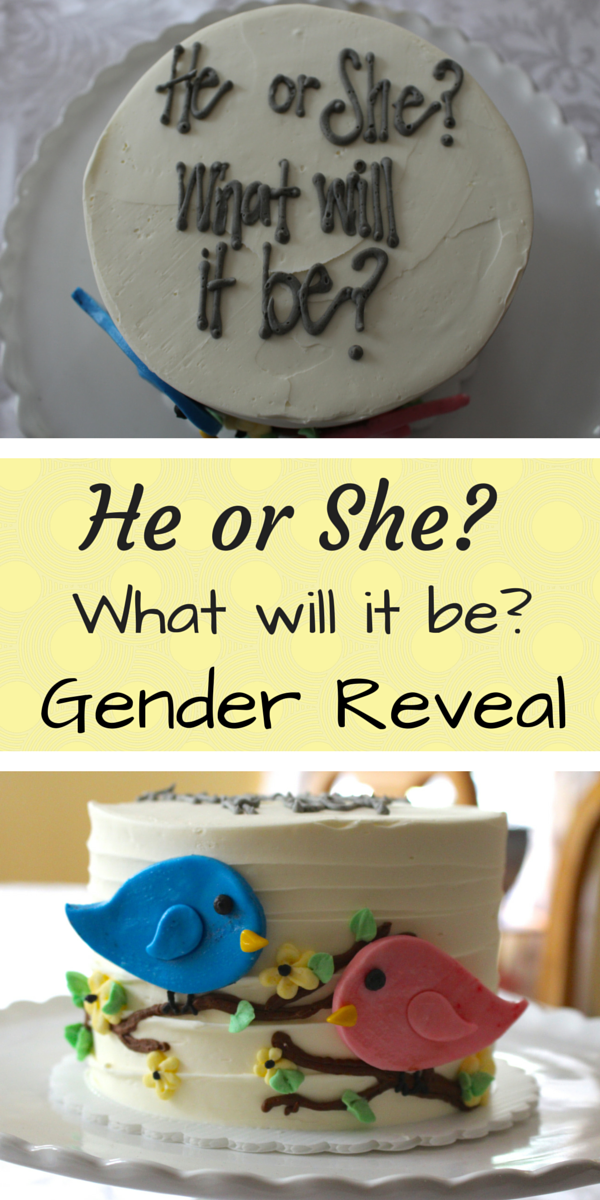 He or She What will it be? Gender Reveal Cake