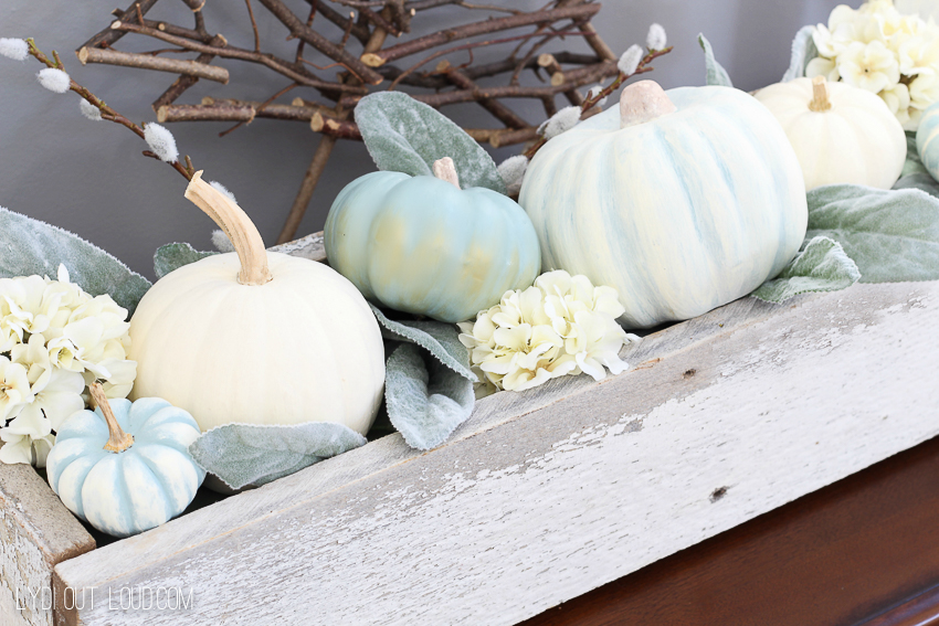 decorative-pumpkins-6805.jpg