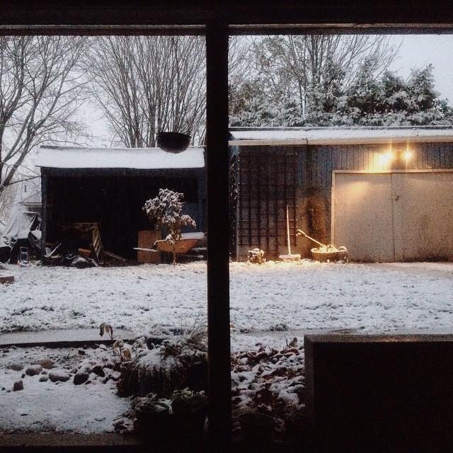 2014-11-29_1417281456.jpg