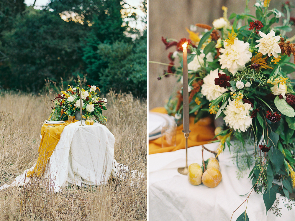 Meghan Mehan Photography - Fine Art Film Photographer - San Francisco | Napa | Sonoma | Santa Barbara - blog 001.jpg