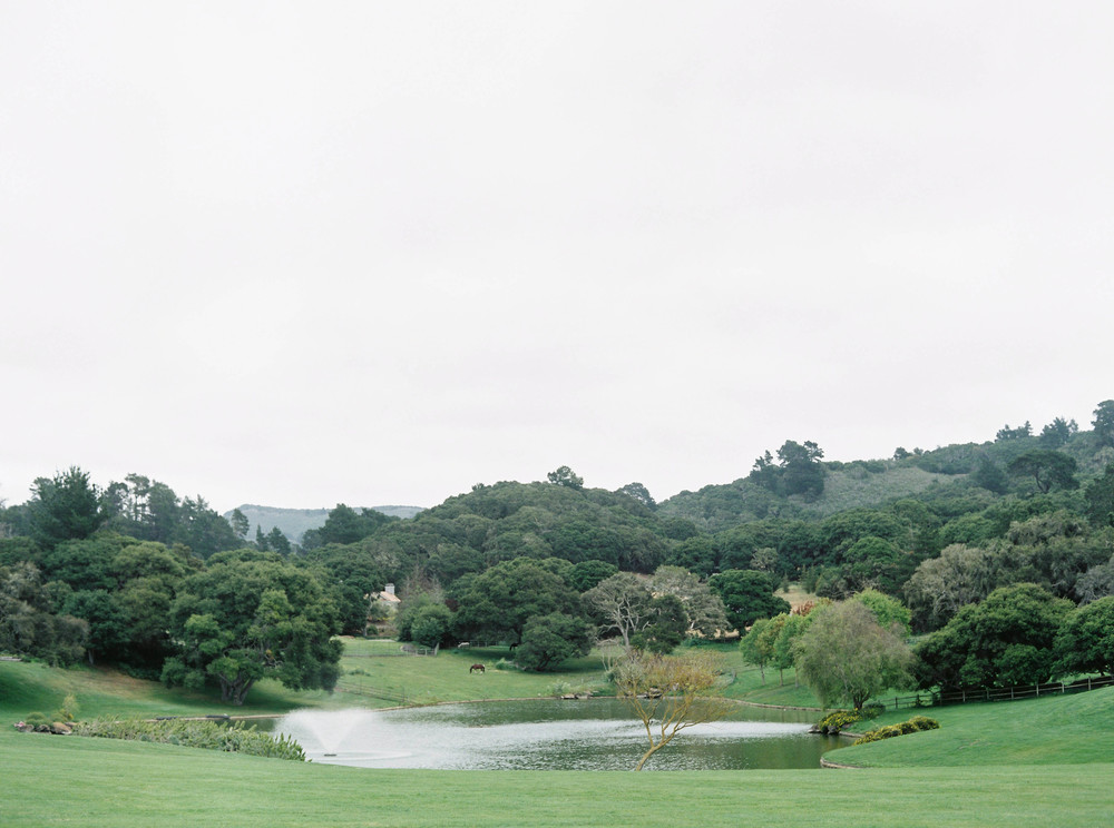 Meghan Mehan Photography - Fine Art Film Photography - San Francisco | Napa | Sonoma | Carmel | Big Sur | Santa Barbara -51.jpg
