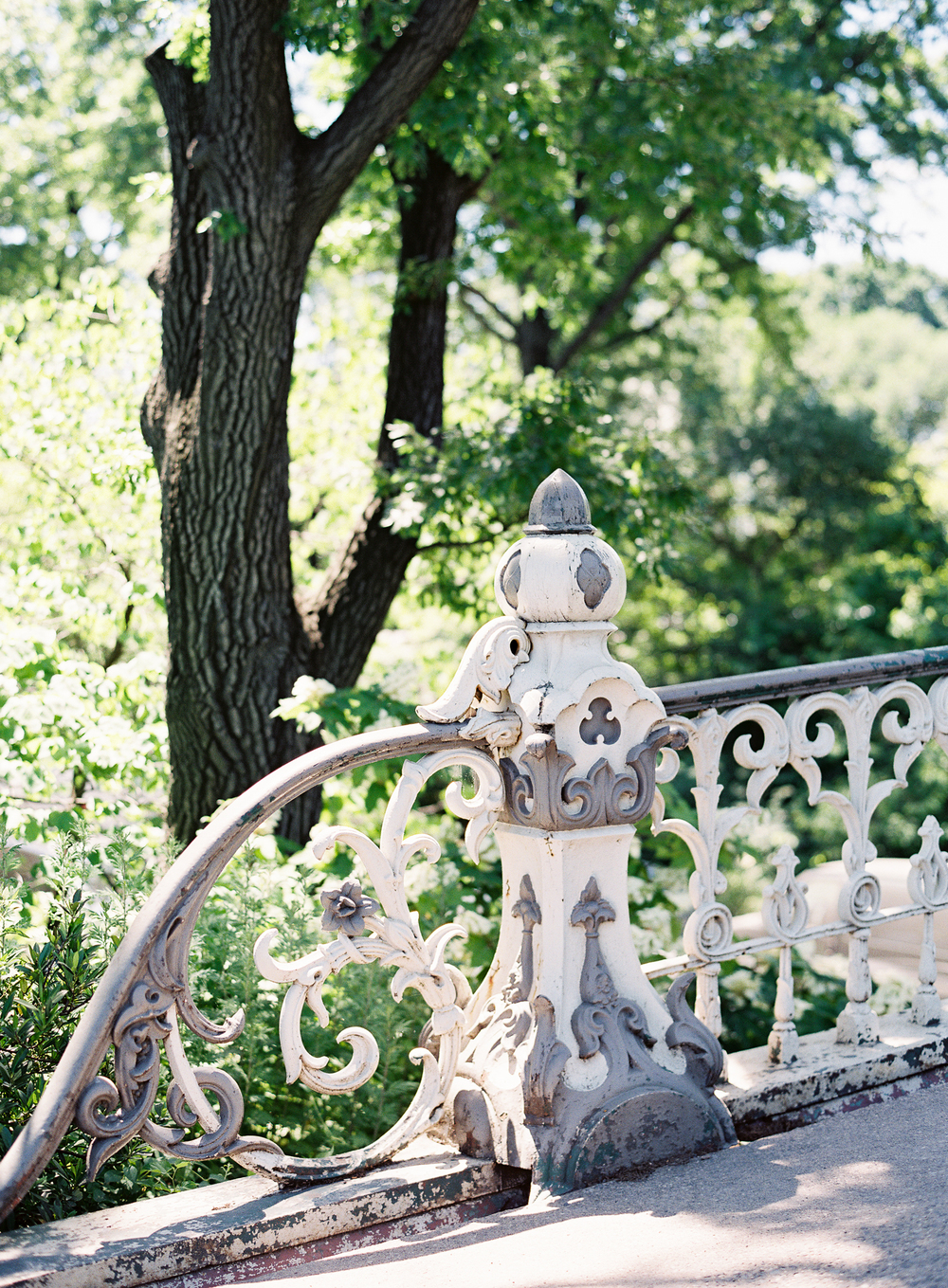 Meghan Mehan Photography - Fine Art Film Photography - California | San Francisco | Napa | Sonoma | New York City - 005.jpg