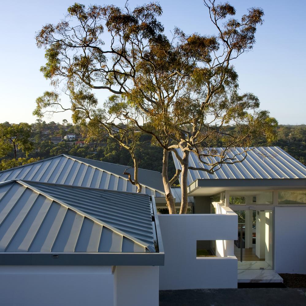 roofscapepg.jpg