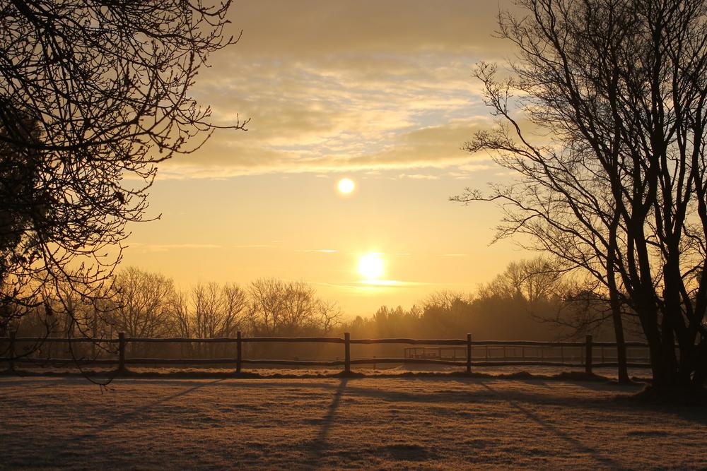 Winter sunrise at Alchornes