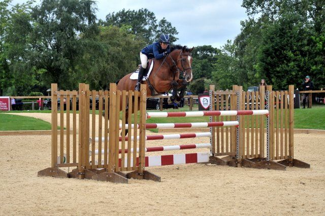 Biscuit Foxhunter RIHS