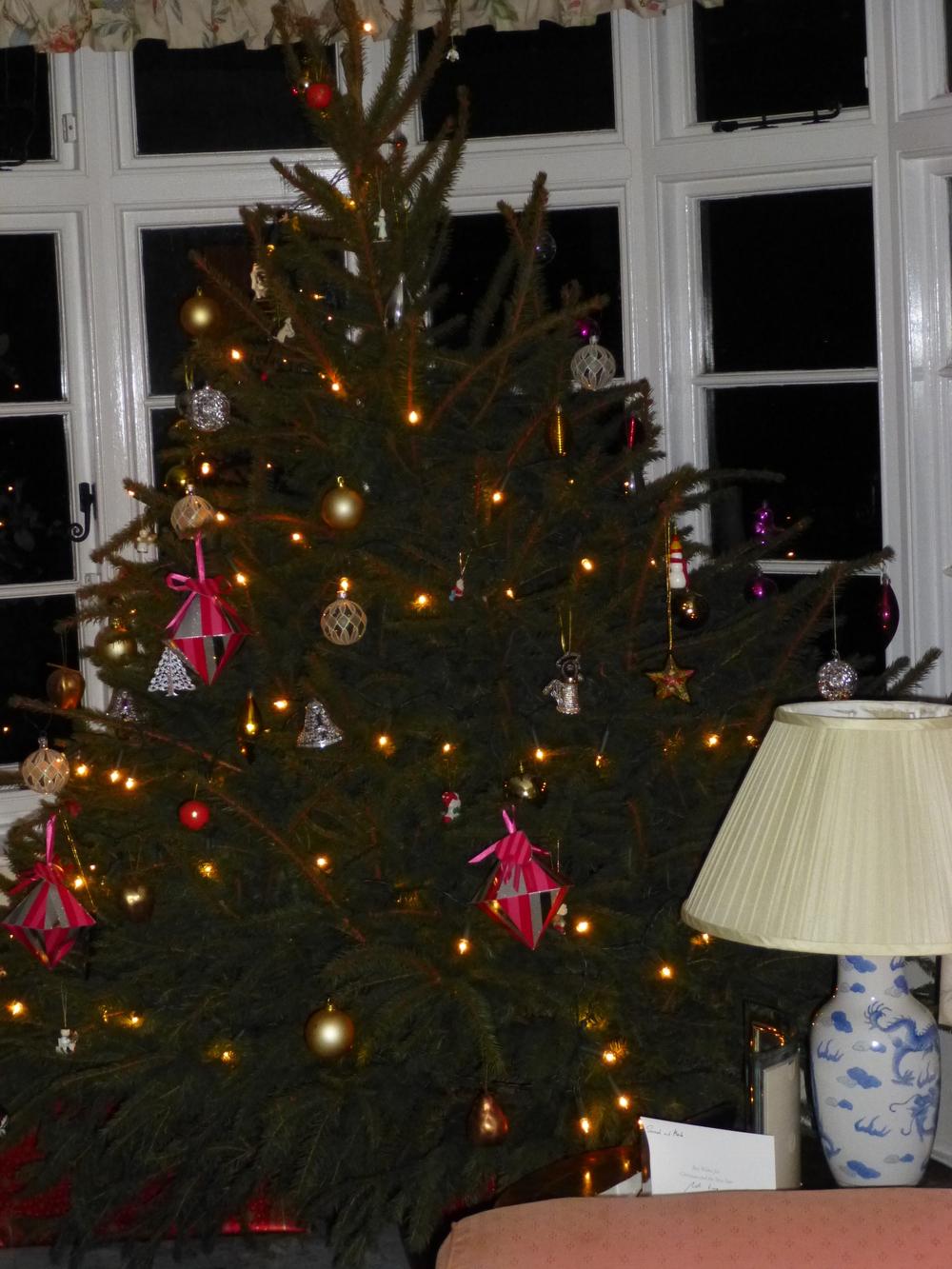 Christmas Tree 2013.JPG