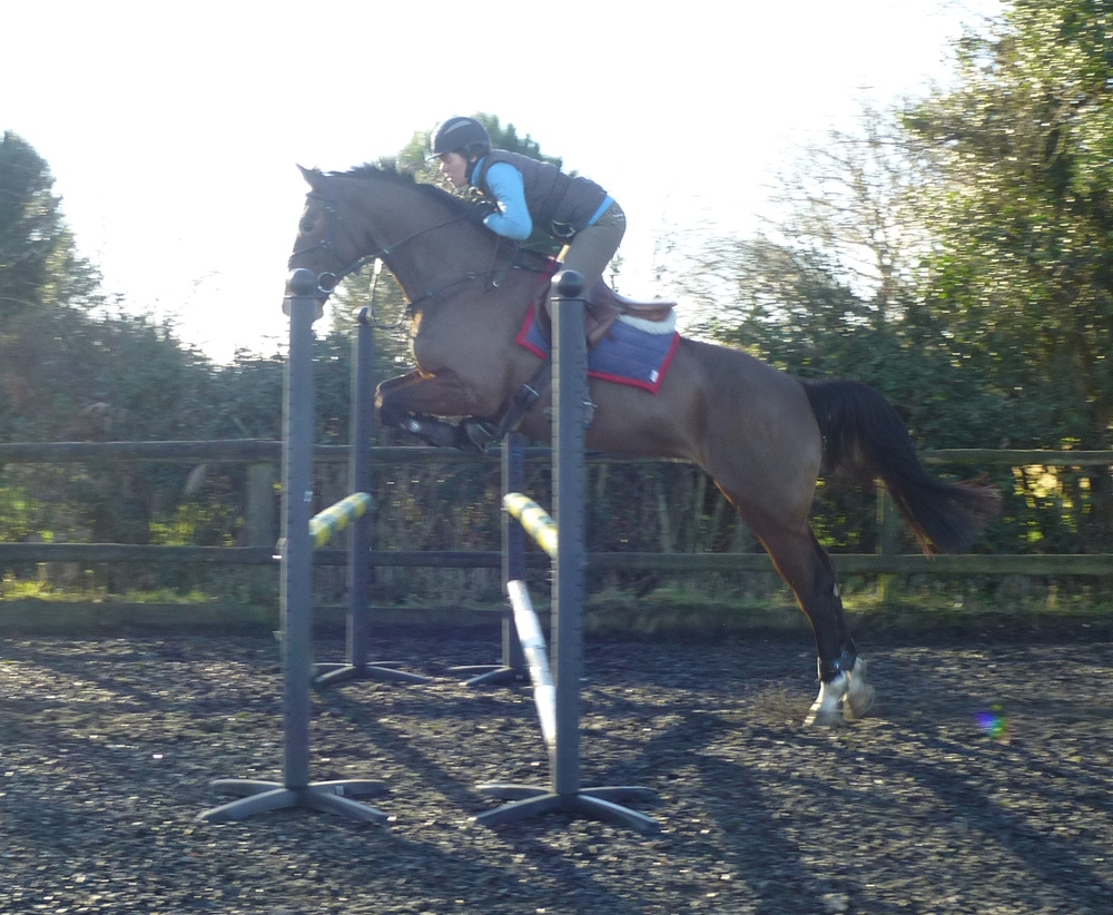 Luendi looking very grown up having a jump at home.