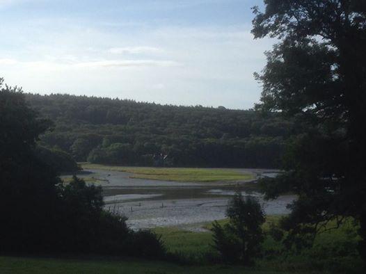 View from Efford.jpg