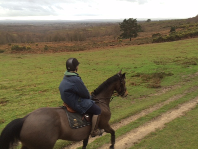 Sophie and Luendi on Ashdown Forest