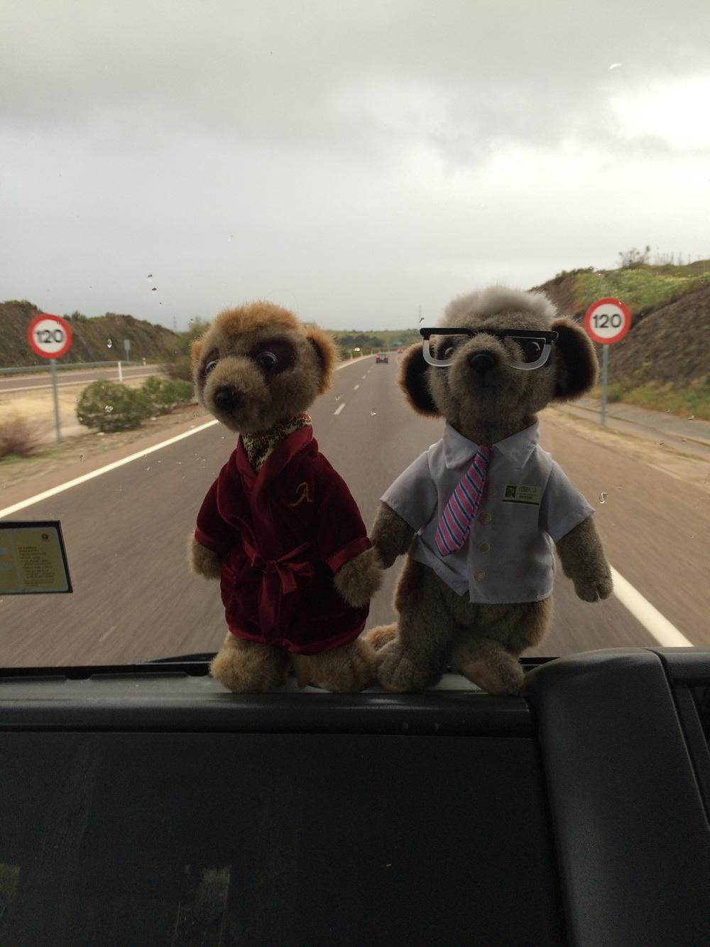 Aleksander and Sergei heading home