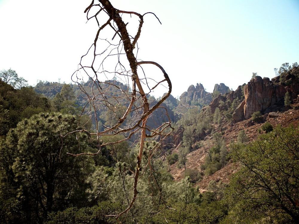 pinnacles 3 (1).jpg