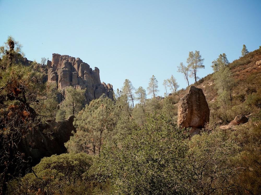 pinnacles 7 (1).jpg