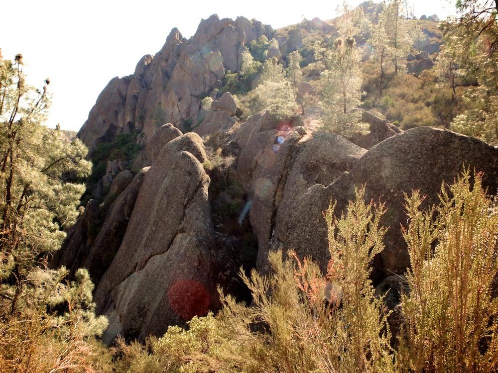 pinnacles 8 (1).jpg
