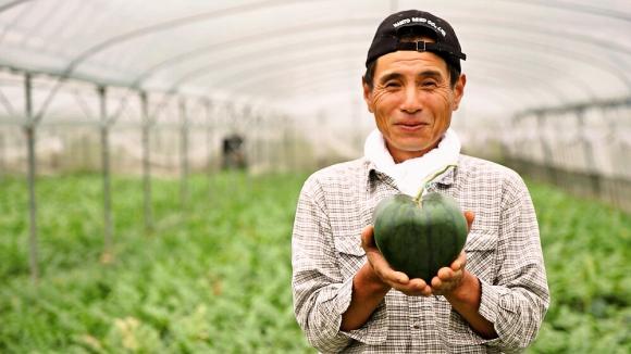 heart_watermelon_2.jpg