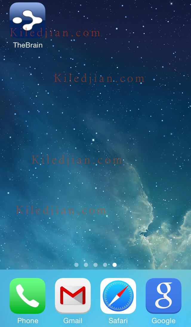 TheBrain for IOS icon
