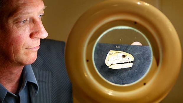 Flinders University paleontologist John Long.  Photo: AFP