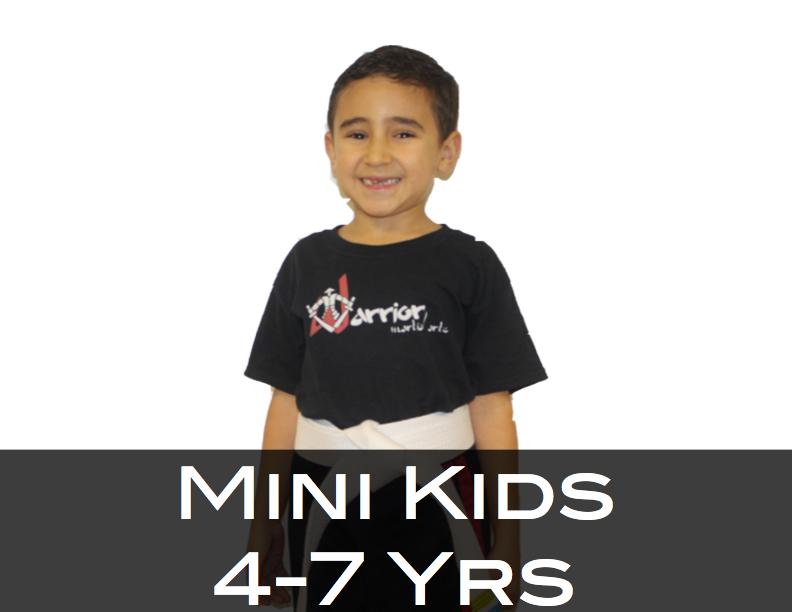 MiniKidsWebsite2.jpg