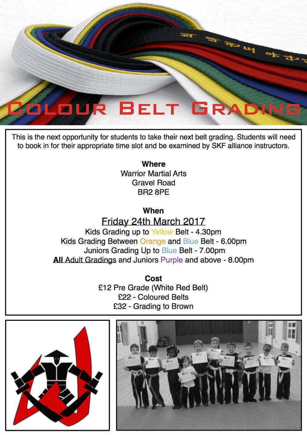 Colour Belt Grading.jpg
