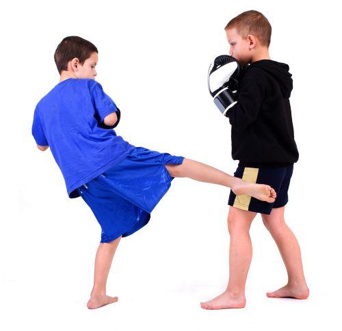 kickboxing-kids-legkick-500.jpg