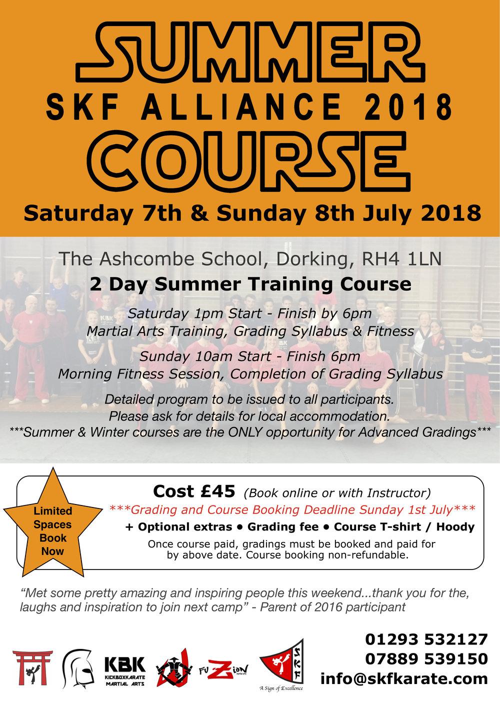 Summer Course 2018 Poster.jpg