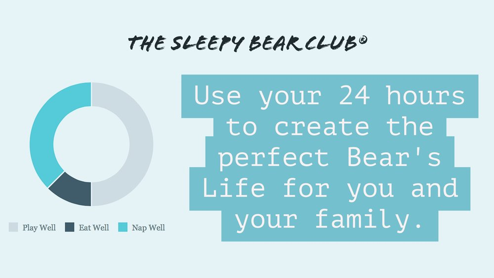 A Bear's Life with The Sleepy Bear Club by Jennifer Grantham