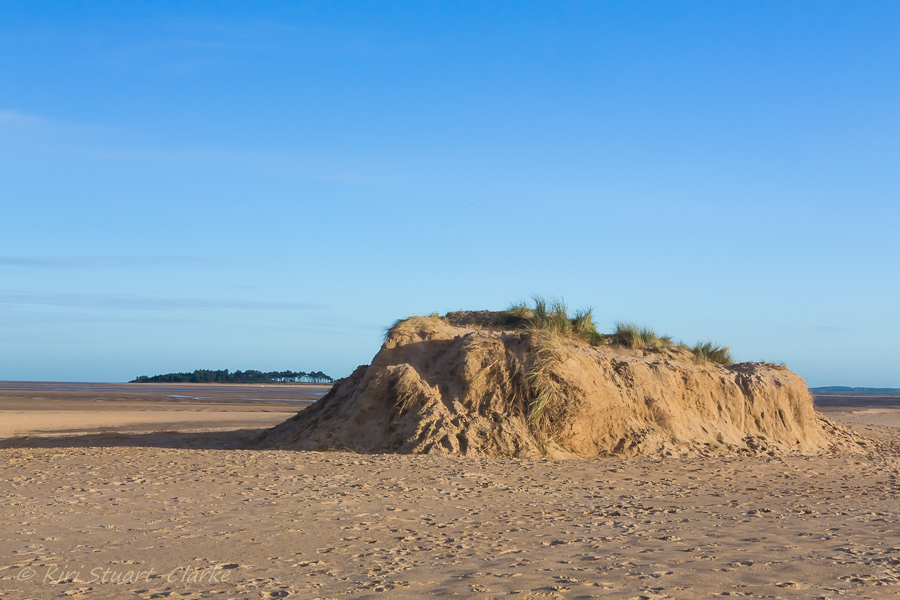 29-Remains of smaller landmark dune.jpg