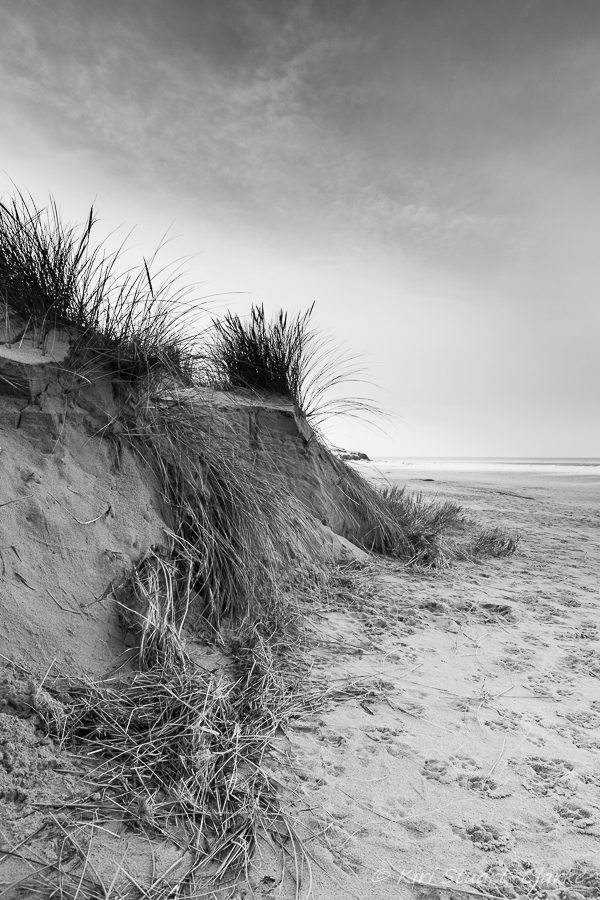 Black and white dunes